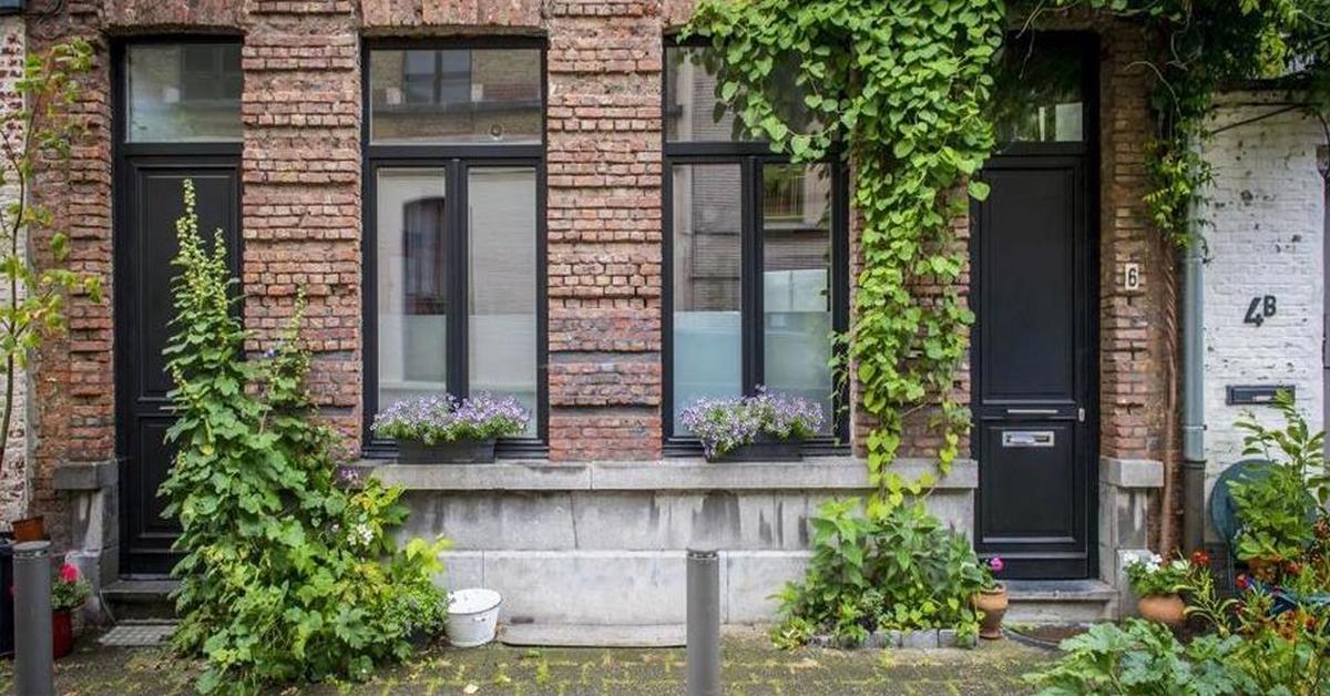 Geveltuintjes in Brugge: tijd om de handen uit de mouwen te steken!